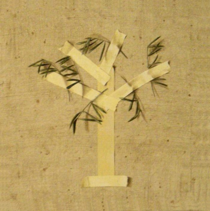 L'olivo, 2007, olio su tela, cm. 50 x 50